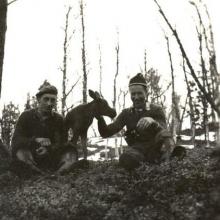 Håkon og Johan Henrik
